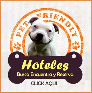hoteles pet friendly aceptan perros pets allowed